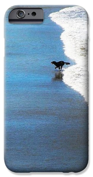 Black Dog iPhone Cases - Run Dog Run iPhone Case by Julie Hughes