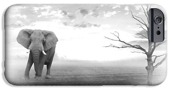 Elephant iPhone Cases - Run to water 2 iPhone Case by Sharon Lisa Clarke
