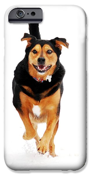 Dog Running. iPhone Cases - Running Dog Art iPhone Case by Christina Rollo