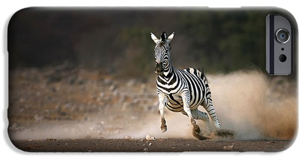 Run iPhone Cases - Running Zebra iPhone Case by Johan Swanepoel