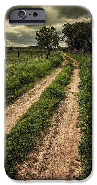 Pathway iPhone Cases - Rural Trail iPhone Case by Carlos Caetano