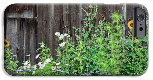 Old Barns iPhone Cases - Rustic Barn Wood and Summer Flowers iPhone Case by Bill  Wakeley
