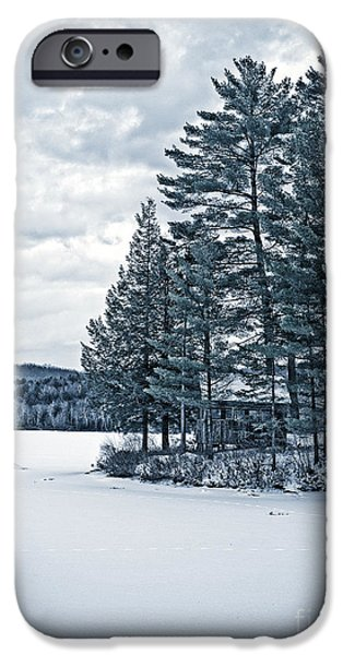 Cold iPhone Cases - Rustic Cabin on the Pond iPhone Case by Edward Fielding