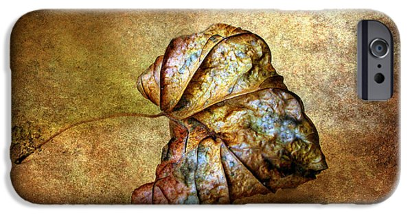 Remnant iPhone Cases - Rustic iPhone Case by Jessica Jenney