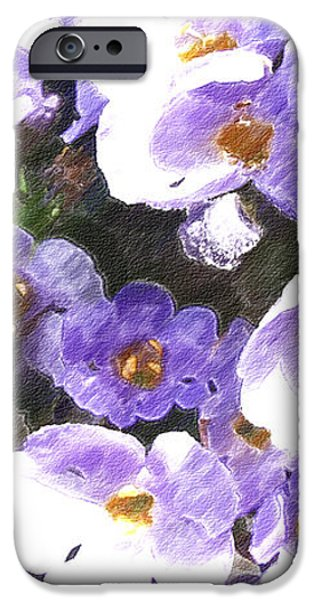 Rustic Planter Box iPhone Case by Beverly Guilliams