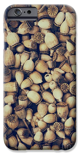 Capsule iPhone Cases - Rustic Poppies iPhone Case by Tim Gainey