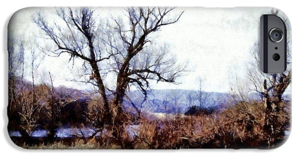 Willow Lake iPhone Cases - Rustic reflections iPhone Case by Janine Riley