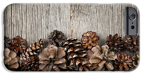 Wood Grain iPhone Cases - Rustic wood with pine cones iPhone Case by Elena Elisseeva