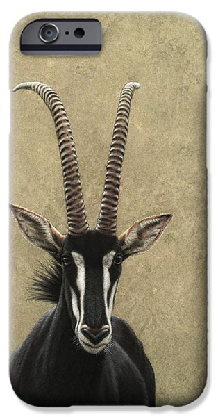 African Animal Drawings iPhone Cases - Sable iPhone Case by James W Johnson