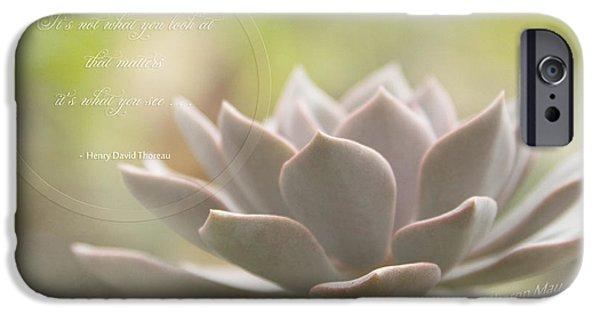 Thoreau iPhone Cases - Sacred Garden iPhone Case by Sharon Mau