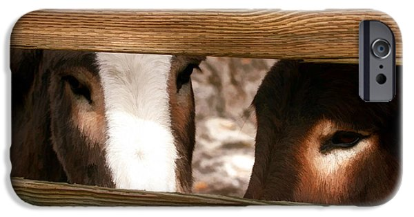 Donkey iPhone Cases - Sad Eyes iPhone Case by Donna Kennedy