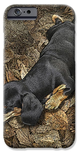 Dachshund Puppy iPhone Cases - Sad Murphy iPhone Case by Judy Wood