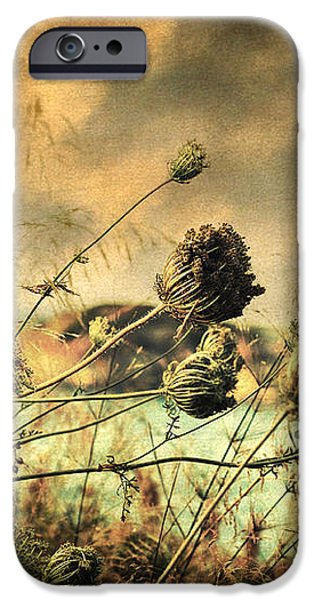 Sad Song of the Wind iPhone Case by Taylan Soyturk