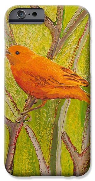 Fauna Glass Art iPhone Cases - Saffron Finch iPhone Case by Anna Skaradzinska