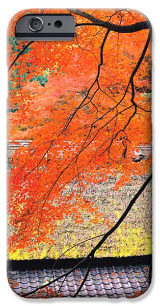 Kyoto iPhone Cases - Sagano Kyoto Japan iPhone Case by Panoramic Images