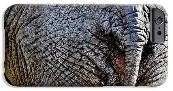 Elephant iPhone Cases - Saggy Baggy iPhone Case by Benjamin Yeager