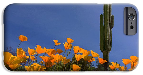 Universities Pyrography iPhone Cases - Saguaro and Poppies iPhone Case by Susan Rovira