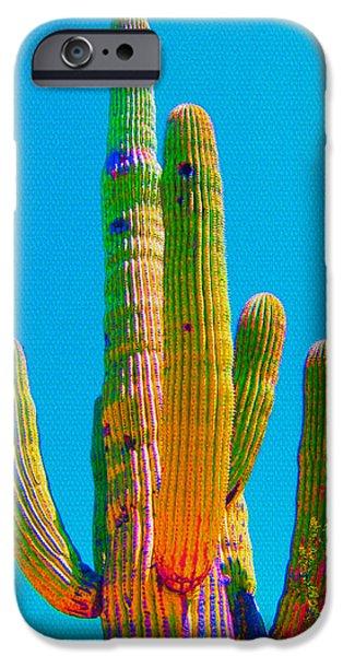 Michelle iPhone Cases - Saguaro Colors iPhone Case by Michelle Dallocchio