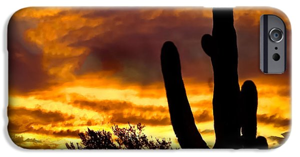 Haybale iPhone Cases - Saguaro Silhouette  iPhone Case by Robert Bales