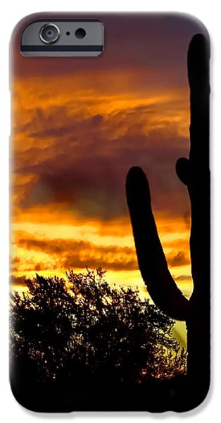 Saguaro Silhouette  iPhone Case by Robert Bales