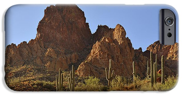 Arizona iPhone Cases - Saguaros - Symbol of the Desert Southwest iPhone Case by Christine Till