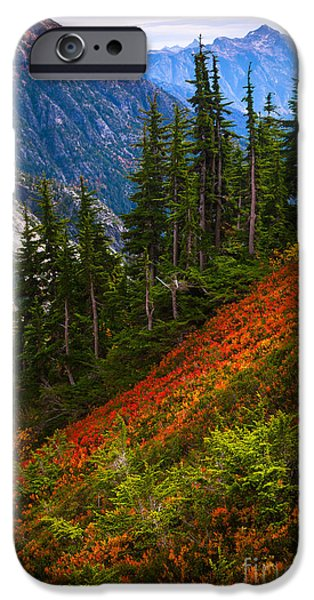 Fall Scenes iPhone Cases - Sahale Arm iPhone Case by Inge Johnsson