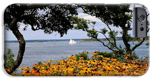 Sailboats iPhone Cases - Sail away iPhone Case by Colleen Mars