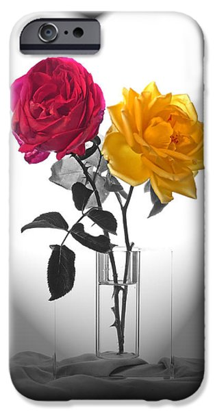 Prescott iPhone Cases - Sallys Bouquet iPhone Case by Charles Ables