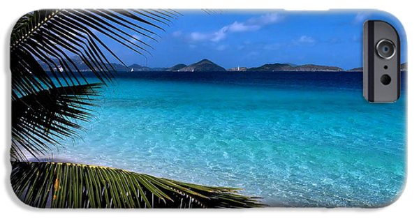 Palm Tree iPhone Cases - Saloman Beach - St. John iPhone Case by Stephen  Vecchiotti