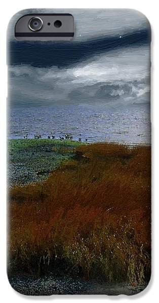 Salt Marsh at the Edge of the Sea iPhone Case by RC DeWinter