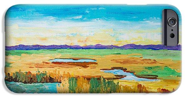 Tidal Creek iPhone Cases - Salt Marsh Hues iPhone Case by Alexandra Nicole Newton
