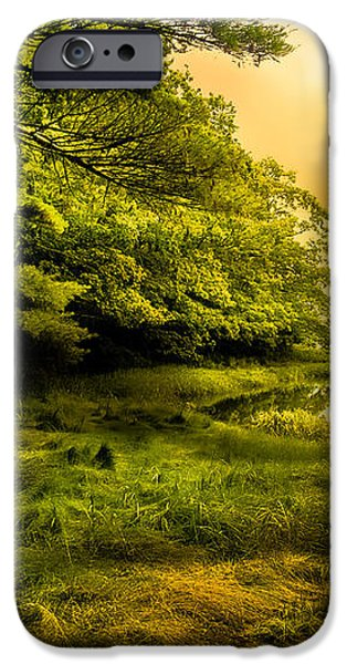 Salt Marsh Kittery Maine iPhone Case by Bob Orsillo