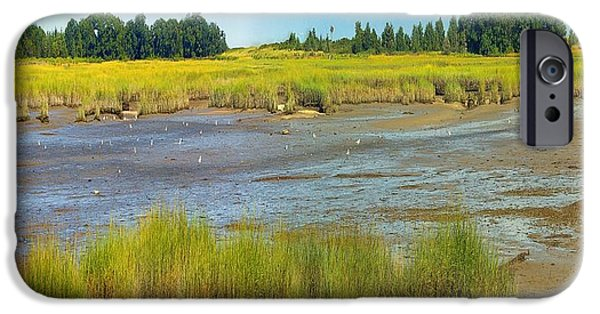 Salt Marsh. New England iPhone Cases - Salt Marsh Low Tide August Colors iPhone Case by Constantine Gregory