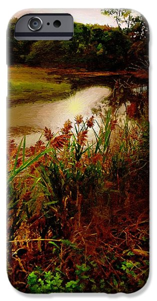 Salt Marsh. New England iPhone Cases - Salt Marsh Sunrise iPhone Case by RC deWinter