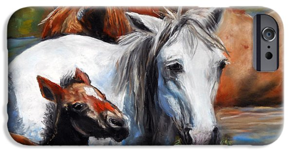 Chatham Pastels iPhone Cases - Salt River Foal iPhone Case by Karen Kennedy Chatham
