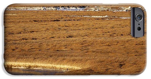 Salt Marsh. New England iPhone Cases - Salt Water Freezes Trust Me iPhone Case by Eunice Miller
