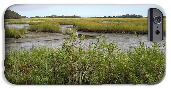 Salt Marsh. New England iPhone Cases - Salt Water Marsh iPhone Case by Valerie Bruno
