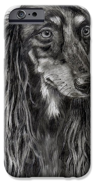 Monotone Drawings iPhone Cases - Saluki Black and White Drawing iPhone Case by Michelle Wrighton
