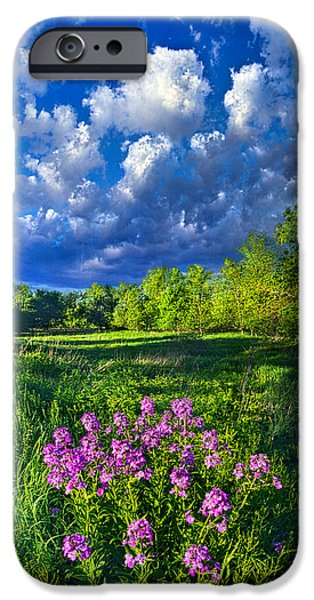 Meadow iPhone Cases - Same Old Light is Shining iPhone Case by Phil Koch