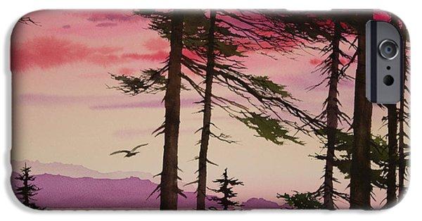 Sunset Framed Prints iPhone Cases - San Juan Sunset iPhone Case by James Williamson