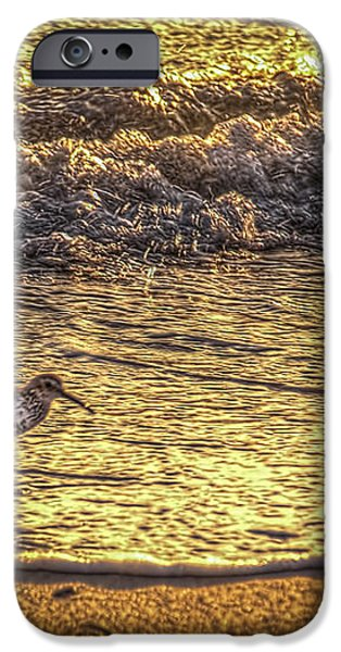 Sand Piper iPhone Case by Marvin Spates