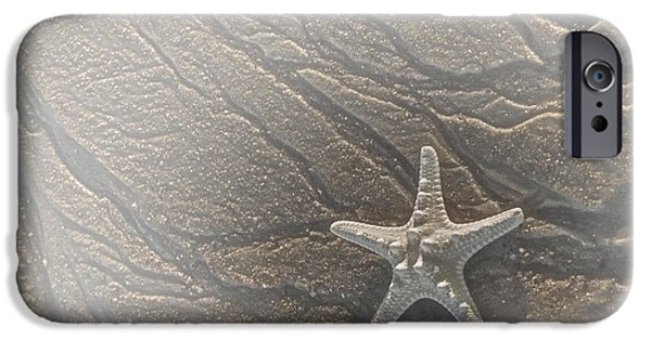 Scenic iPhone Cases - Sand Prints and Starfish II iPhone Case by Susan Candelario