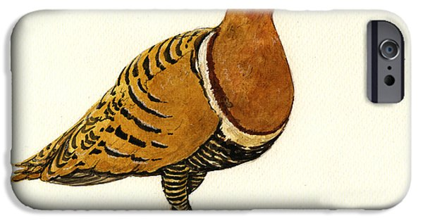 Nature Study Paintings iPhone Cases - Sandgrouse iPhone Case by Juan  Bosco