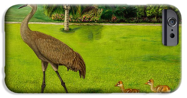 Original iPhone Cases - Sandhill crane with chicks in Nalcrest iPhone Case by Zina Stromberg