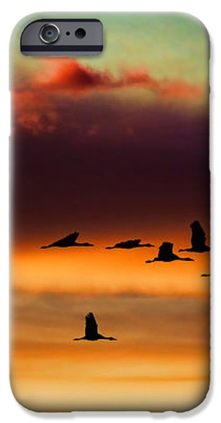 Sandhill Cranes Take The Sunset Flight iPhone Case by Bill Kesler