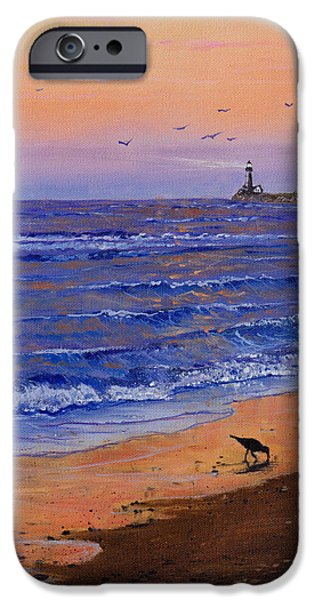 Bob Ross Paintings iPhone Cases - Sandpiper At Sunset iPhone Case by C Steele