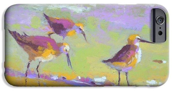 Seagull Pastels iPhone Cases - Sandpipers II iPhone Case by Christine  Camilleri