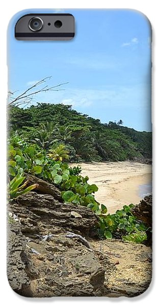 Sandy Beach at Rincon PR iPhone Case by Tim Treadwell