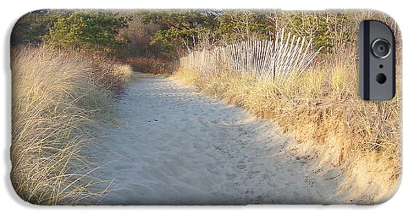Winter In Maine iPhone Cases - Maine Beach Sandy Pathway Prints iPhone Case by Eunice Miller