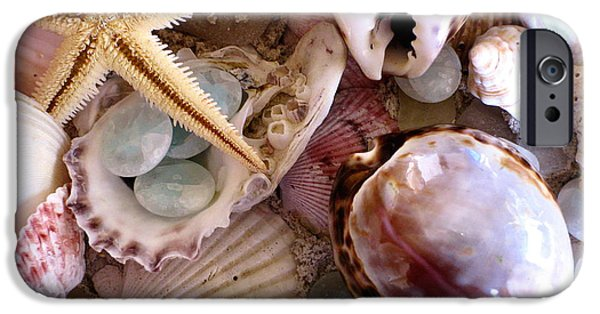 Original Photography iPhone Cases - Sanibel Shells iPhone Case by Colleen Kammerer